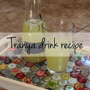 Star Trek drink recipe: Tranya fruity non-alcoholic drink | One Mama's Daily Drama