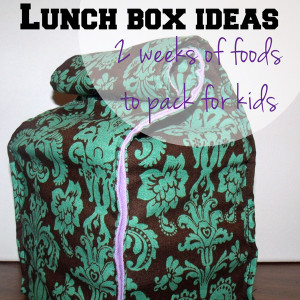 Lunch box ideas: 2 weeks of food to pack for kids | One Mama's Daily Drama --- Don't get in a school lunch rut. Here are ten ideas to get your creative lunch-packing skills going.