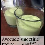 Avocado recipes from Chef Pati Jinich