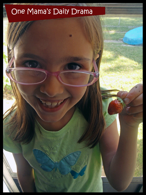 Kids love to grow something they can eat, like strawberries.