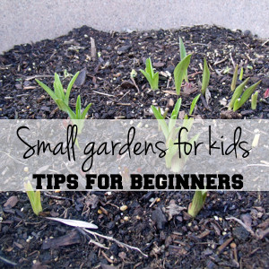 Small gardens for kids: tips for beginners | from One Mama's Daily Drama
