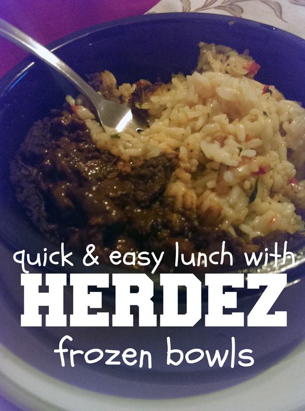 Quick and easy lunch with Herdez frozen bowls. 10 different authentic flavors! | One Mama's Daily Drama