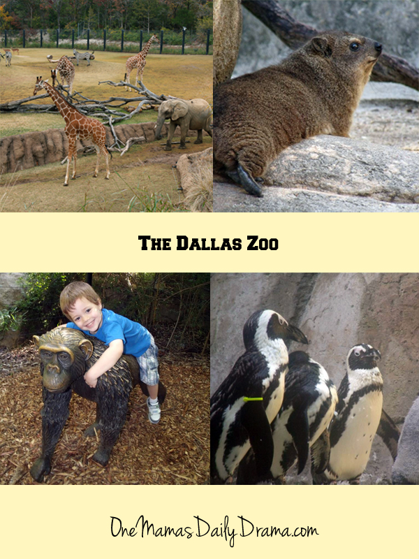 10 things to do in Dallas | One Mama's Daily Drama --- There are lots of fun things to do with kids in Dallas!