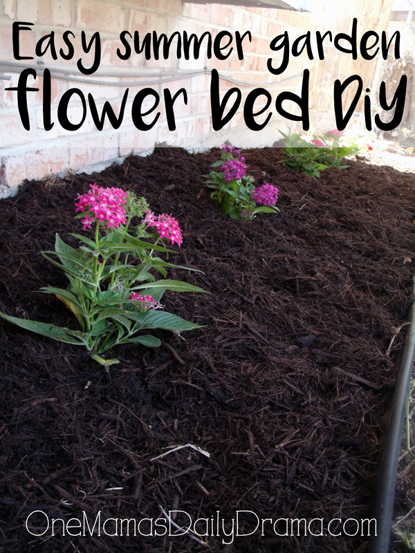 Easy summer garden flower bed DiY | What to plant when it's too hot outside