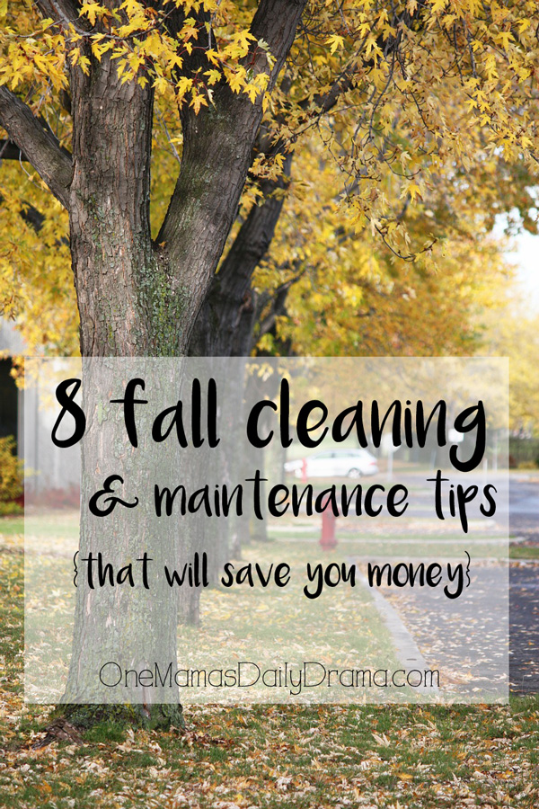 "tree lined road with yellow falling leaves and blog post title text reading ""8 Fall Cleaning and Maintenance Tips That Will Save You Money"""