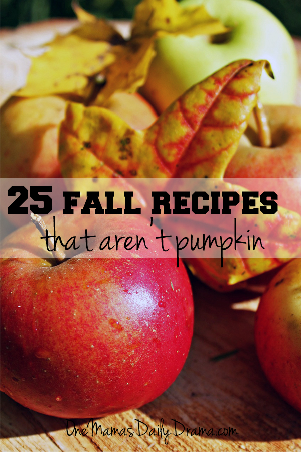 25 fall recipes that aren't pumpkin | One Mama's Daily Drama --- The recipes include ingredients like apples, sweet potatoes, squash, cranberries, and chocolate.