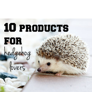 10 products for hedgehog lovers | One Mama's Daily Drama