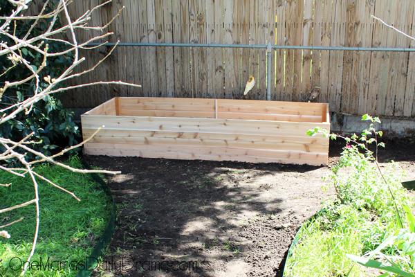 raised-garden-bed10