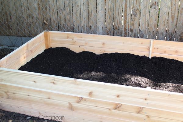 raised-garden-bed11