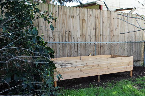 raised-garden-bed9