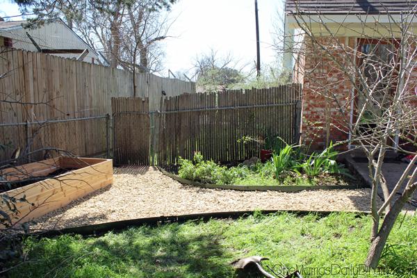 herb-garden10