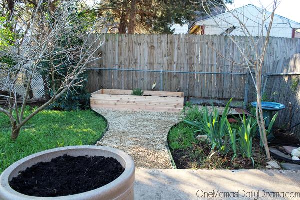 herb-garden11