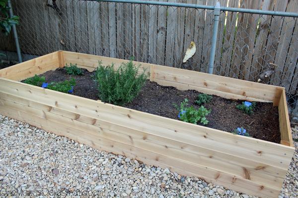 herb-garden12