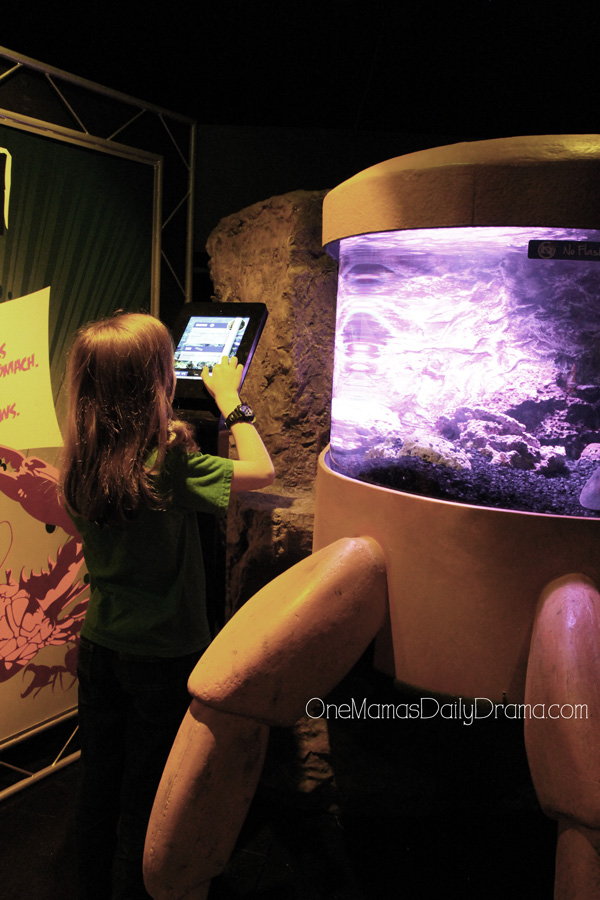 educational tablets at SEA LIFE Grapevine
