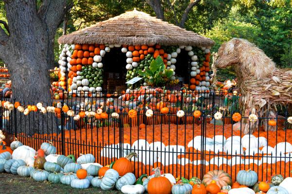 Autumn at the Arboretum | Dallas fall festival