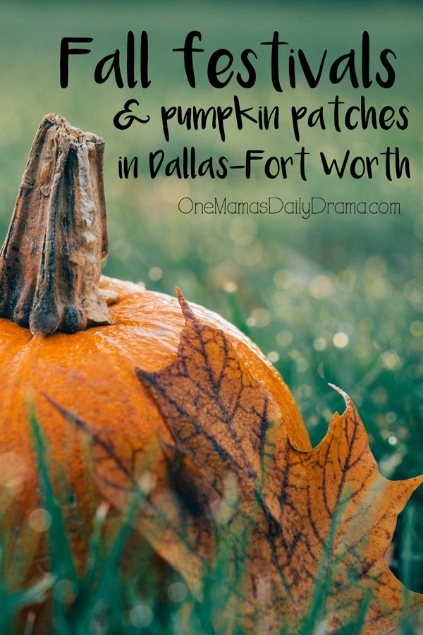 Fall festivals and pumpkin patches in DFW 2016