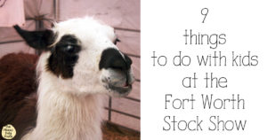 9 things to do with kids at the Fort Worth Stock Show