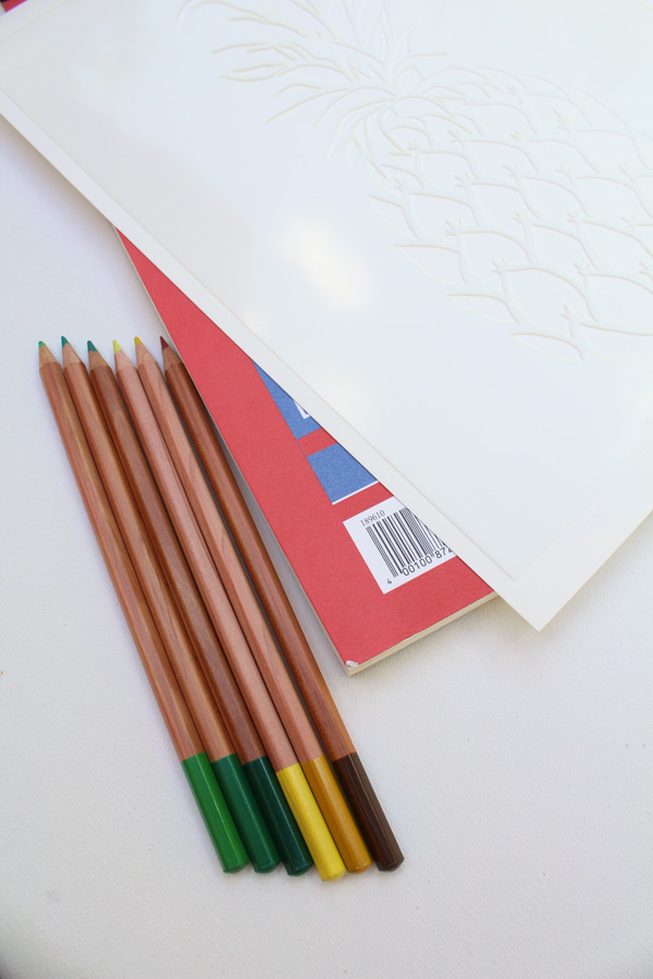 pineapple stencil watercolor pencil color choice