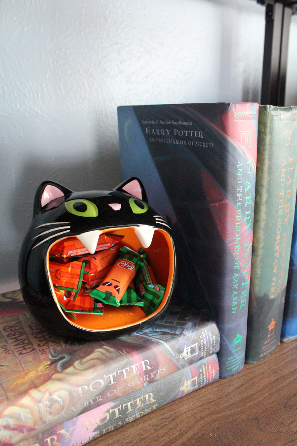 closeup of a black cat with a wide mouth holding mini kit-kat bars and sitting on books